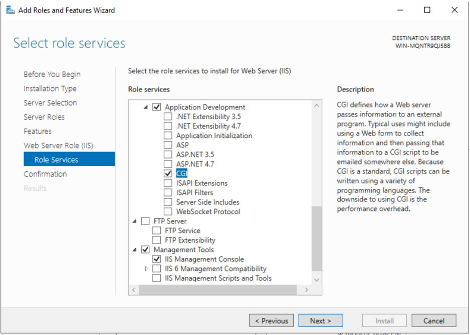 Server Manager Add Roles and Features IIS CGI