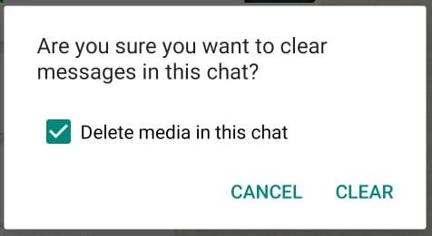 WhatsApp Clear Chat Delete Media
